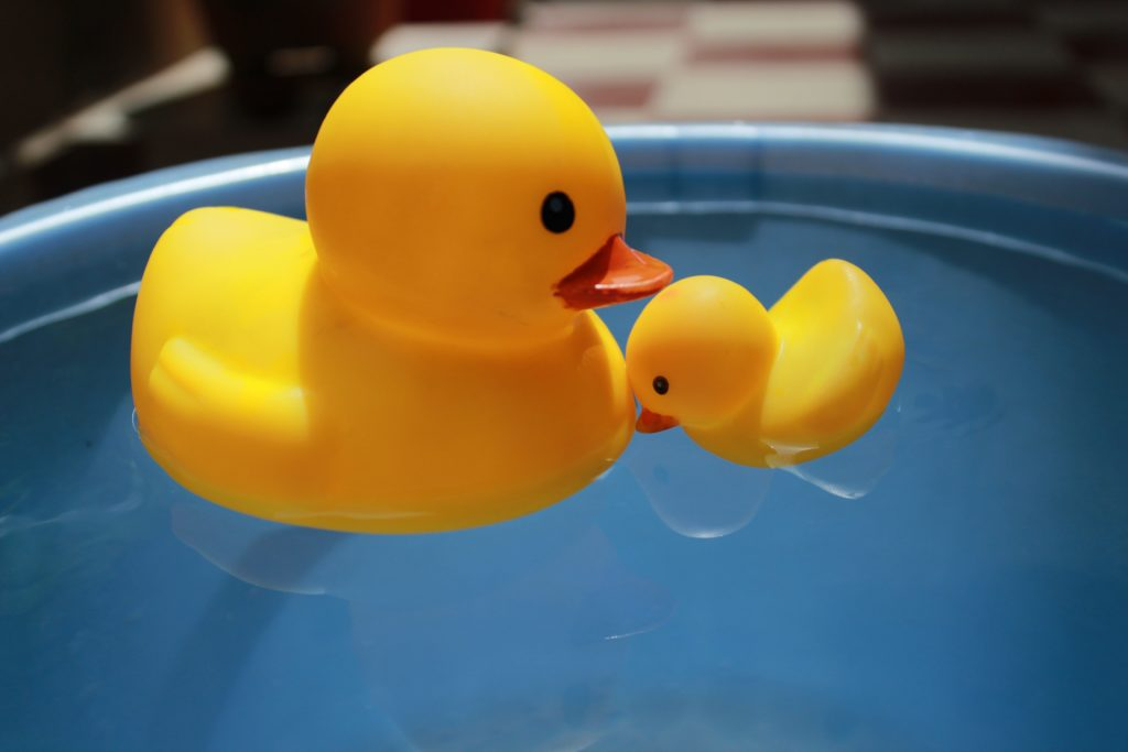 Avoid soft toys like rubber ducks. They are unlikely to be BPA free and Phthalate free.